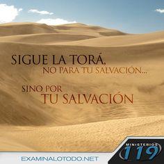 https://flic.kr/p/EzQTZd | FB Pic 76 (spanish)