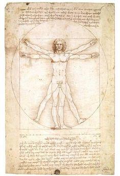 Vitruvian Man 1492 Leonardo Da Vinci Art Poster Poster
