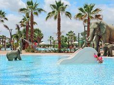 En el camping Marjal Costa Blanca disfrutará en verano de sus piscinas tropicales: una gran piscina lago para adultos y dos piscinas infantiles con toboganes.