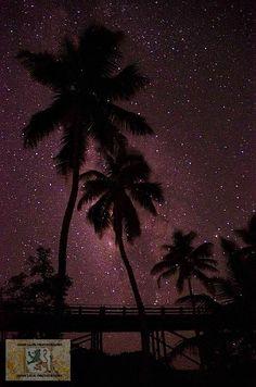 Enjoy spectacular starlit Bahia Honda State Park skies when camping Florida Keys. Comin for ya in a few days! Florida Camping, Florida Travel, Florida Keys, Florida Trips, Fl Keys, Florida Usa, Vacation Trips, Vacation Spots, Bahia Honda State Park