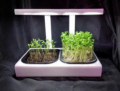 Generation 3 MicroFarm for PreSale TODAY ... ships soon, limited supply !!!   breakthrough pricing
