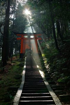 Follow the stairs into a land of tradition... Fushimi Inari Shrine - Kyoto, Japan