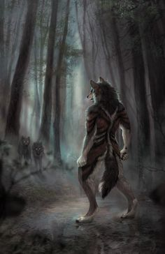furry,фурри,фэндомы,furry art,furry wolf,furry canine,furry m,wolnir,furry artist