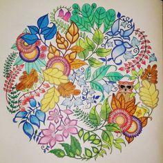 Mein Zauberwald #malen #malenfürerwachsene #colouring #color #meinzauberwald #enchantedforestcolouringbook #enchantedforest #johannabasford #johannabasfordcolouringbook