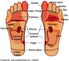 Reflexologia y automasaje en los pies - Taringa!