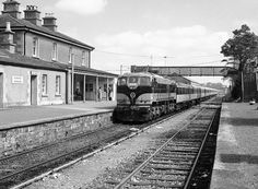 CIE Noon train arrives at Nenagh. c.1960s