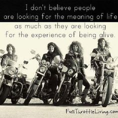 Bonneville Cafe Racer, Triumph Bonneville, Lady Biker, Biker Girl, Easy Rider, Harley Davidson, Motorcycle Memes, Women Motorcycle Quotes, Biker Love