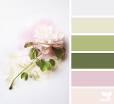I like the greens in general, but also the purply-pink for Carolina's room