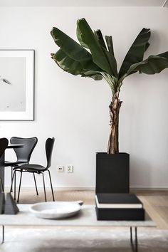 130 best modern tropical decor images modern tropical, wall lightshome living, living room decor, oscar properties, scandinavian interior, swedish interior design