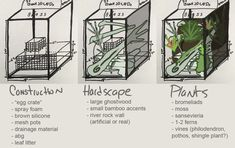 Working on the general plan for my crested gecko's adult enclosure. I thought I'd post it so you guys can see how I go about designing vivariums. This is going to be my fall project ! Wanted to do...
