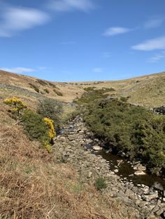 Blue skies over Barhaugh Burn on route to Horsemans Ford - here Williamston Barns. Luxury Holiday Cottages, Holiday Accommodation, Luxury Holidays, Blue Skies, Barns, Wilderness, Natural Beauty, Ford, England