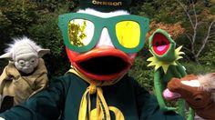The Oregon Duck - Gangnam Style Parody (Video)