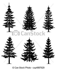 Pine tree Images and Stock Photos. 185,333 Pine tree photography ...