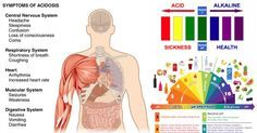 17 Signs Your Body Is Too Acidic And 9 Ways To Quickly Alkalize It. Unhealthy habits. Smoking, lack of sleep, stress and most importantly the foods you eat can all affect your body's pH levels. Citric foods such as lemons and oranges are acidic in nature, but they are alkaline forming within the body. Using pH test strips, you can determine your pH. The best time to test your pH is about one hour before a meal and two hours after a meal. Test your pH two days a week...