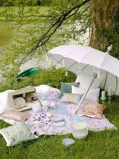 Riparian Picnic Setting.. love the pillows, makes it more luxurious!