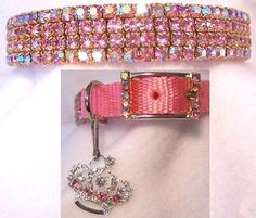 blinged out dog collar. too cute.
