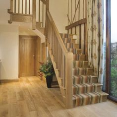 Oak Staircase With Carpet