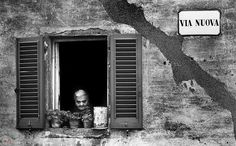 Montescudaio - Via Nuova