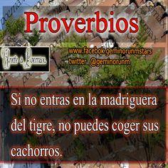 Imagenes con proverbios para cultivar la mente - Imagenes Poemax