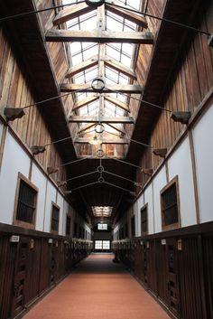 天窓で自然光を取り入れている舎房の廊下。両側に房が並んでいる=博物館網走監獄で2016年5月10日、坂本智尚撮影