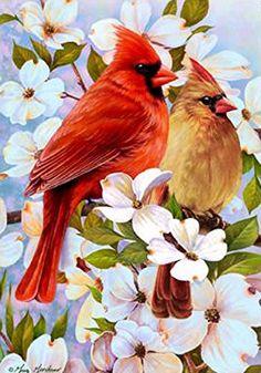 "Dogwood Pair Cardinal Spring House Flag Floral Decorative Yard Banner 28"" x 40"" Custom Decor http://www.amazon.com/dp/B00BMTX5JG/ref=cm_sw_r_pi_dp_MZGYvb0MF6RKQ"