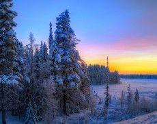kış, gün batımı, manzara, ağaçlar