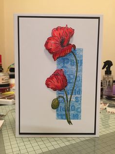 This gallery showcases the stunning new stamps and dies hand drawn by Sheena Douglass from the new Perfect Partners Tags range ! Sheena Douglass, Wild Poppies, Poppy Cards, Fun Fold Cards, Crafters Companion, Sympathy Cards, Flower Cards, Cardmaking, Card Ideas