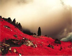 Dean Bennici and his Infrared Masterpieces - Lomography