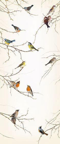 Love this wallpaper. Perfect for an accent wall, or a small powder room or closet. Would be a gorgeous woodland inspired guest room too. Birds Wallpaper Mural Door Murals Wallpaper Murals Ltd Door Murals, Of Wallpaper, Wallpaper Panels, Feng Shui Wallpaper, Vintage Bird Wallpaper, Eclectic Wallpaper, Vintage Wallpaper Patterns, Hallway Wallpaper, Wallpaper Borders