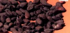Gustos y colores: MuCho, Museo del Chocolate en México
