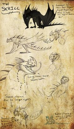 ideas how to train your dragon skrill hiccup Httyd Dragons, Dreamworks Dragons, How To Train Dragon, How To Train Your, Fantasy Creatures, Mythical Creatures, Night Fury Dragon, Dragon Sketch, Wings Of Fire