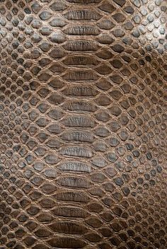 «Nature does nothing in vain Fabric Textures, Textures Patterns, Fabric Patterns, Natural Form Art, Natural Texture, Photo Texture, Texture Art, James Brown, Brown Leather Texture