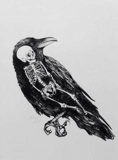 skeleton inside