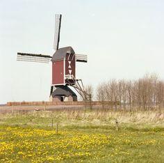 Someren Standerd molen Den Evert Einhoutsestraat 8 Jos Pé (fotograaf) 1970
