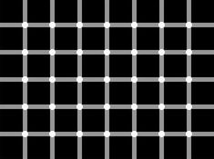 Count the Dots in this Optical Illusion - http://www.moillusions.com/count-dots-optical-illusion/