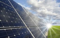 Activity - Renewable or Not? - Discover why sustainable use of natural resources is important.