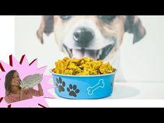 Crocchette per Cani Fatte in Casa - YouTube