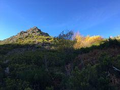 BAITOBEK ENDAY: Otoño en la Montaña(2)