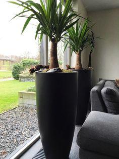 Nep bloem in vazen 🌸   Bloemen/plant deco ideetjes ❥   Pinterest