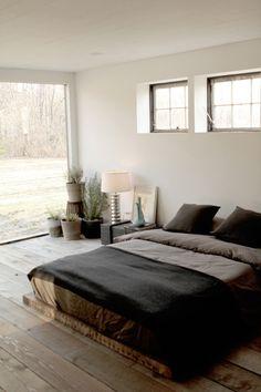//pot arrangements, glass wall, low bed
