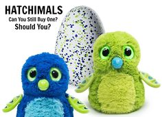 "This holiday season, Hatchimals have become the ""must have"" toy. Can you still get one at an affordable price? And is this interactive toy even worth it? We give you the lowdown."