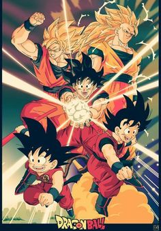 Goku's Life