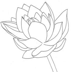 Lotus Flower Growing Coloring Page | Kids Play Color