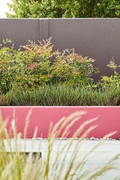 Wall: Knightsbridge 215 in Intelligent Masonry Paint Low Wall: Carmine 189 in Intelligent Masonry Paint Sitges, Exterior Paint, Exterior Design, Jardin Luxuriant, Little Greene Paint Company, Paint Meaning, Masonry Paint, High Gloss Paint, Gardens