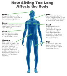 How Sitting Too Long Affects Your Body  Chiropractic care is essential, Apex can help 405 848 7246