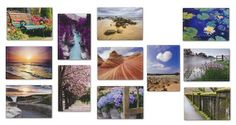Blank Greeting Cards, Value Box of 24 $5.99