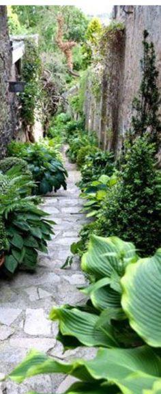 Narrow Gardening
