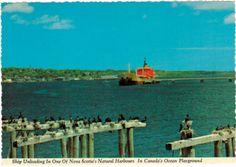 Nova Scotia Nova Scotia, Canada, Painting, Art, Painting Art, Paintings, Kunst, Paint, Draw