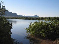Conoce las paradisíacas playas de Bahía de San Carlos en el estado de Sonora