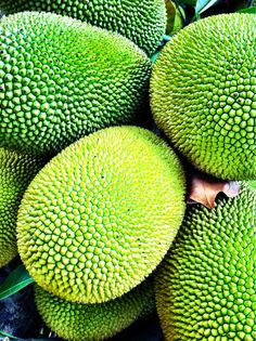 sonyalouise: Jack fruit. saw this fruit for the first time yesterday